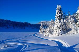 Бесплатные фото зима,снег,сугробы,горы,деревья,лыжня,следы