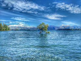 Фото бесплатно горы, дерево, пейзаж