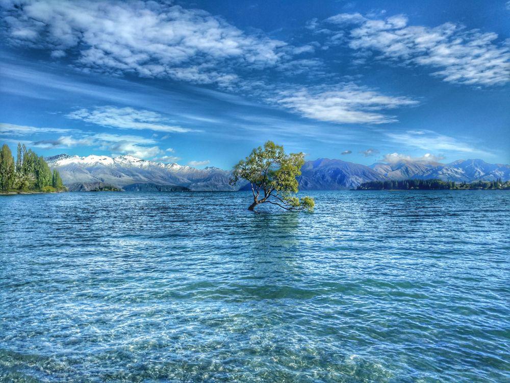 Фото бесплатно горы, дерево, пейзаж - на рабочий стол
