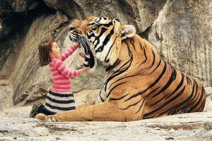 Фото бесплатно пасть тигра, девочка, клыки