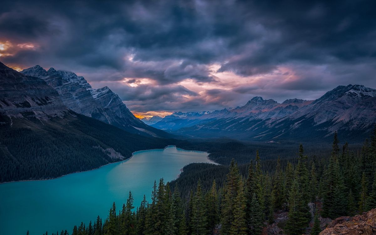 Обои Peyto Lake, Banff National Park, Alberta картинки на телефон