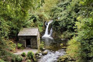 Старое строение у реки в лесу