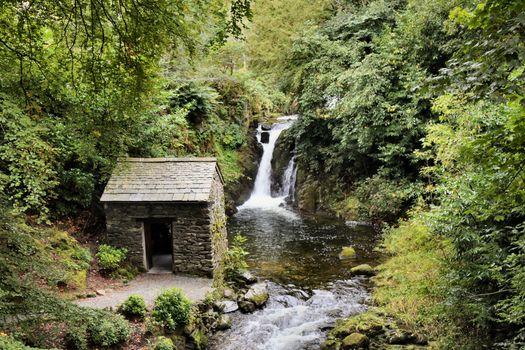 Старое строение у реки в лесу · бесплатное фото