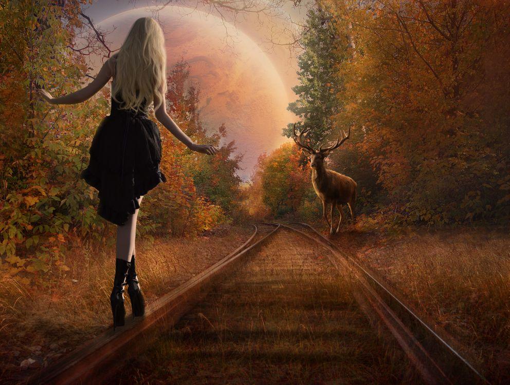 девушка и олень · бесплатное фото