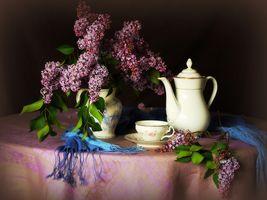 Фото бесплатно букет сирени, сирень, цветы
