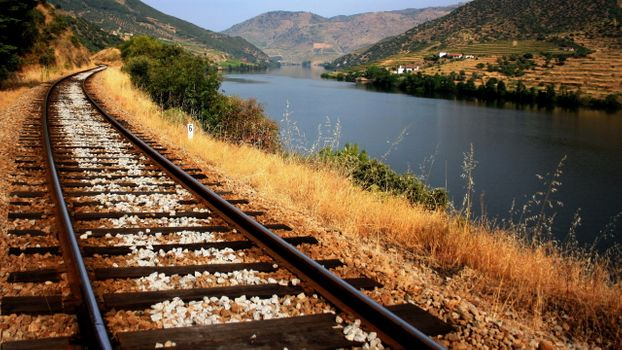 Photo free railway, river, bushes