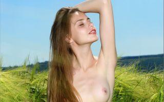 Бесплатные фото она,tan,mplstudios,cornfield,elle,elle tan