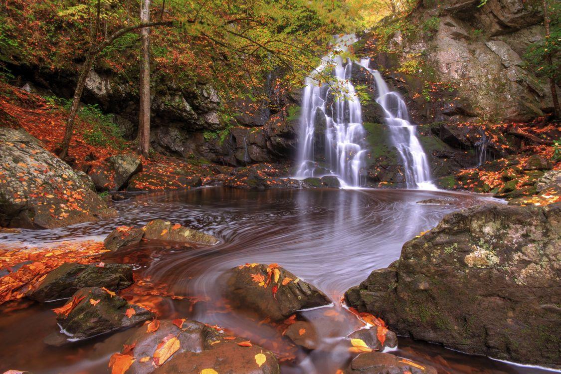 Фото бесплатно Great Smoky Mountains National Park, природа, водопад - на рабочий стол