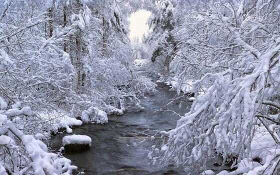 Фото бесплатно пейзажи, природа, реки
