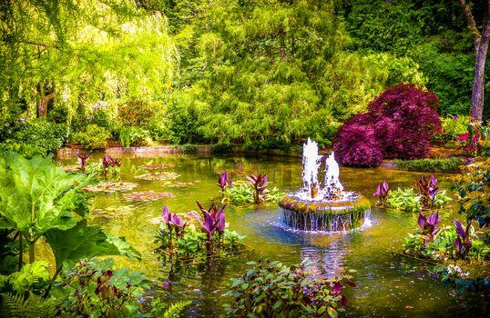 Бесплатные фото Butchart Gardens,Canada,сад,парк,водоём,пруд,фонтан,деревья,растения,пейзаж