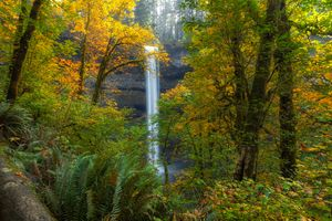 Заставки South Falls, Silver Falls State Park, Oregon