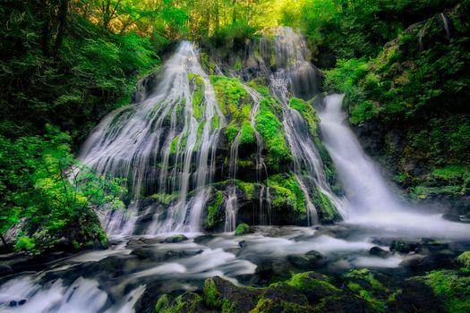 Бесплатные фото водопад,лес деревья,скалы,природа,пейзаж,Panther Falls,located in the Columbia River Gorge,North of Carson Washington,Водопад Пантера,расположенный в ущелье реки Колумбия,к северу от Карсона,Вашингтон