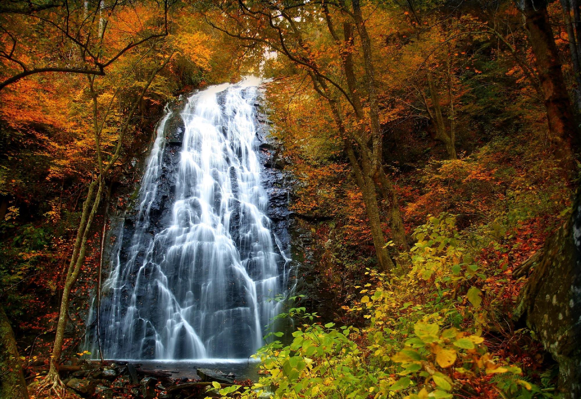 ознакомившись данной осенний водопад фото можете заказать