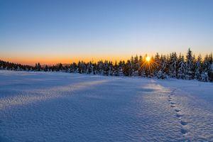 Заставки следы, природа, снег