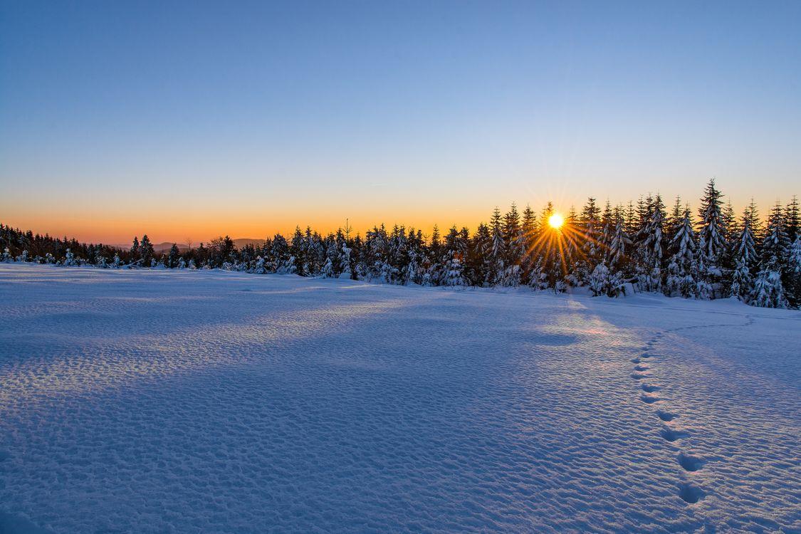 Фото бесплатно следы, природа, снег - на рабочий стол