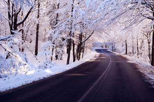 Фото бесплатно дорога, зима, лес