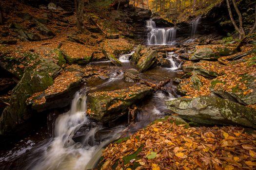 Фото бесплатно камни, река, осень цвета
