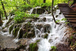 Бесплатные фото Плитвицкие озера,Национальный парк Плитвицкие озера,Plitvice Lakes national park,Croatia,Хорватия