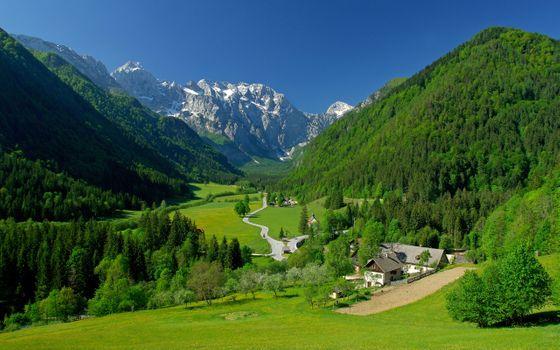 Alpine fields - free photo