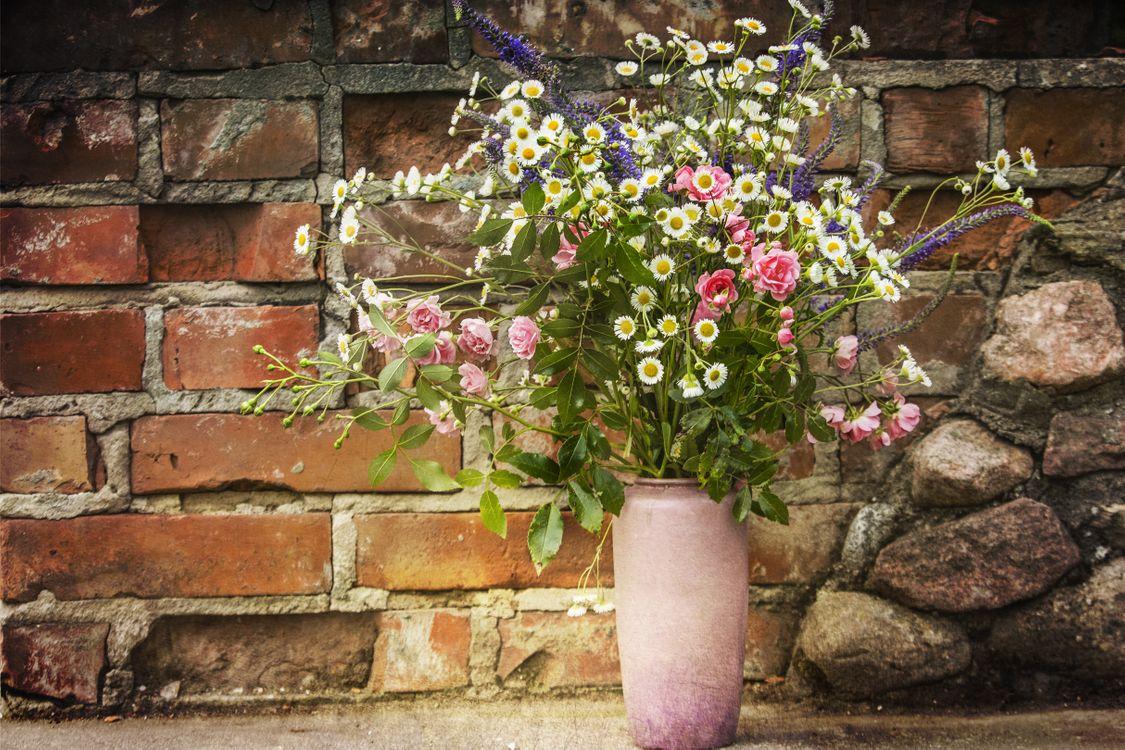 Фото бесплатно Праздничный букет, полевые цветы, ваза - на рабочий стол