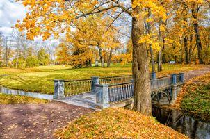 Мост в Екатерининском парке · бесплатное фото
