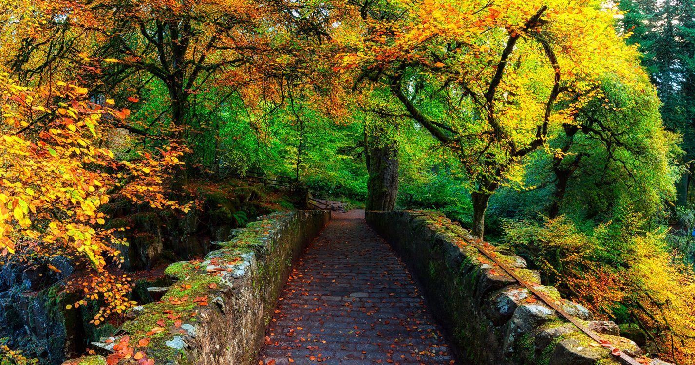 Шотландия - Осенние цвета · бесплатное фото