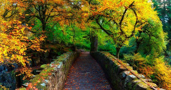 Шотландия - Осенние цвета