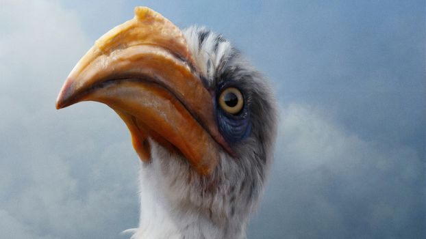 Фото бесплатно Король Лев, птица, дисней