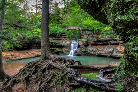 Фото бесплатно Upper Falls, Old Mans Cave, Hocking Hills State Park, Ohio, скалы, мост, водопад, деревья, корни, водоём, природа