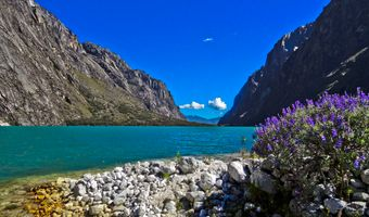 Photo free National park, Peru