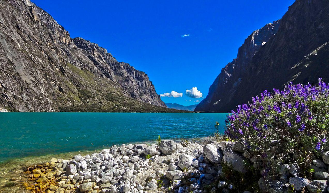 Фото бесплатно National, park, Peru - на рабочий стол