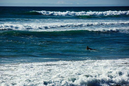 Бесплатные фото Океан,волна,сан-диего