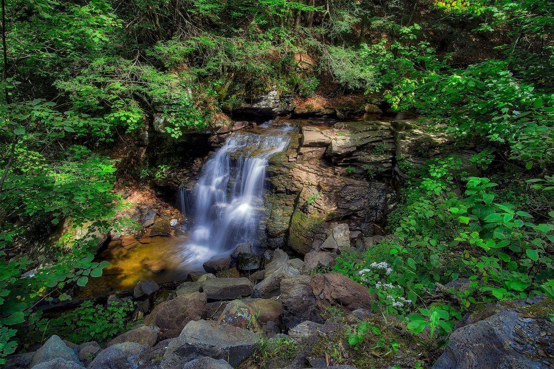 Обои водопад, вода, конечно картинки на телефон