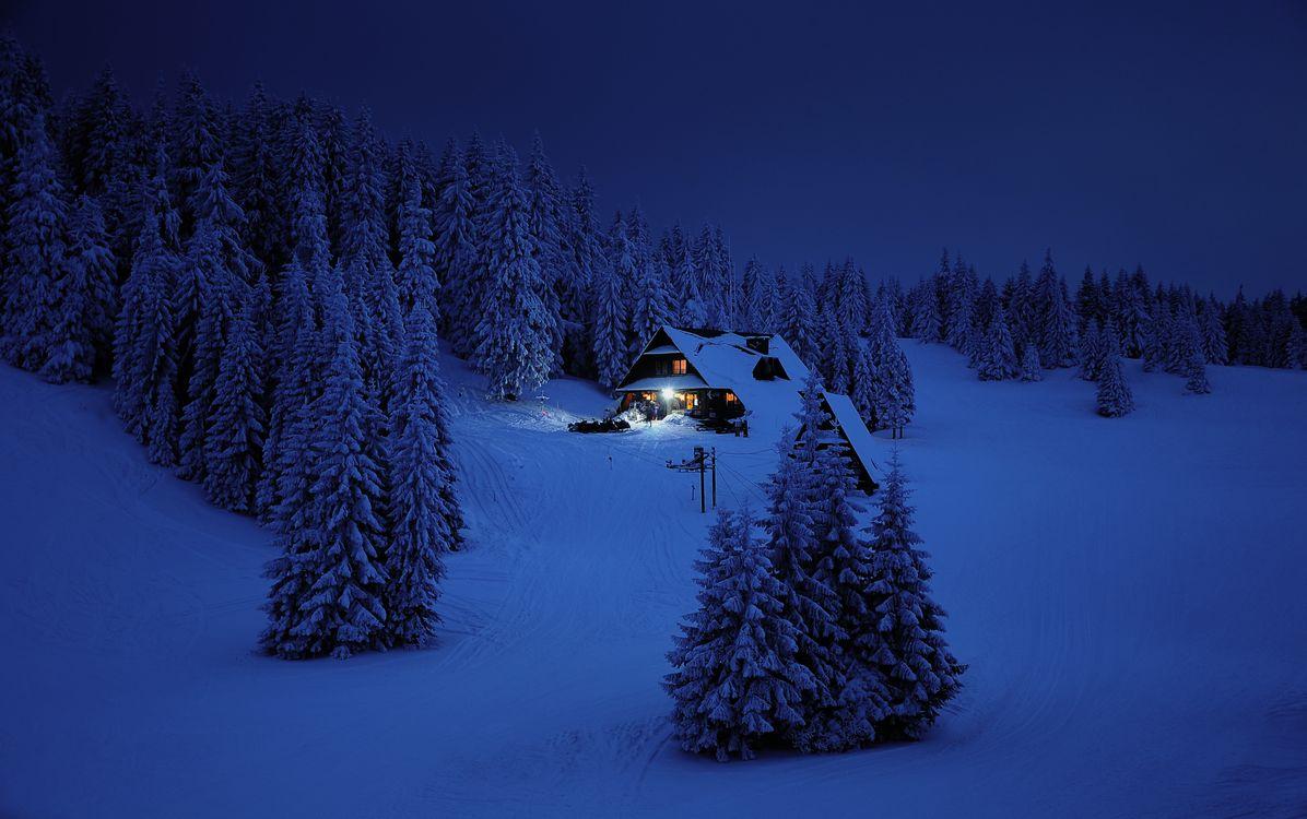 Фото бесплатно зима, ночь, горы, Польша, снег, домик, хижина, деревья, лыжный курорт, природа, пейзаж, пейзажи