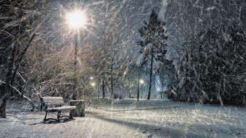 Бесплатные фото зима,ночь,парк,фонарь,лавочка,снег,освещение