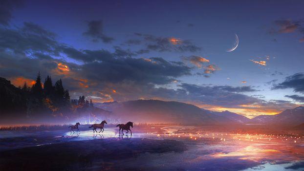 Фото бесплатно ночь, лошади, месяц