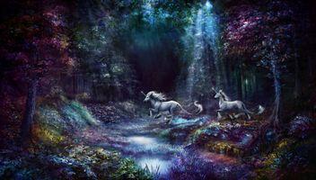 Фото бесплатно сказочные кони, фэнтези, свечение