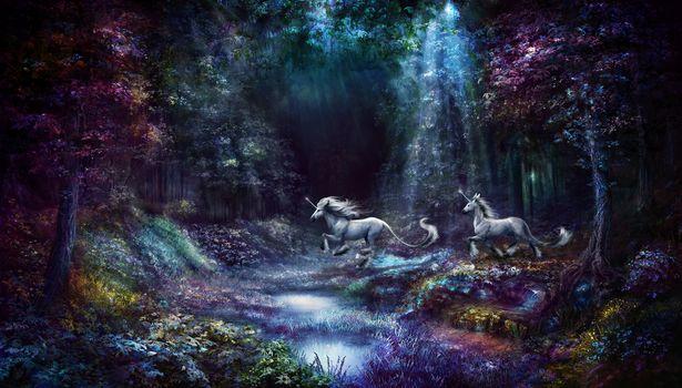 Photo free fairy horses, fantasy, glow