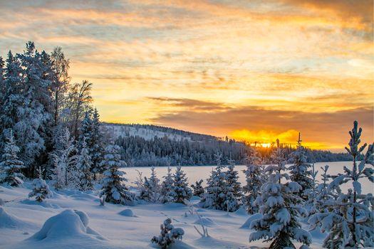 Заставки Sweden, зима, снег