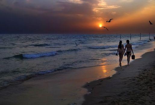 Фото бесплатно закат, море, пляж, волны, чайки, птицы, девушки, пейзаж