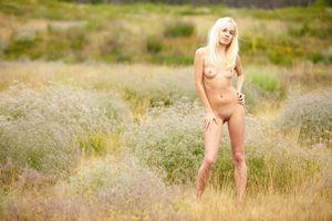 Бесплатные фото Aljena A,красотка,голая,голая девушка,обнаженная девушка,позы,поза
