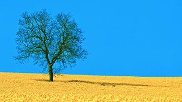Заставки голубой, горизонт, пейзаж
