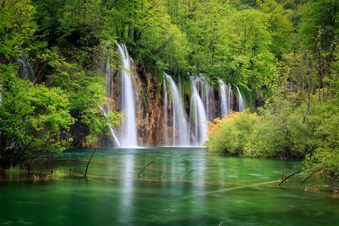 Free photo Croatia, national Park Plitvice lakes, Plitvice Lakes national park - to desktop