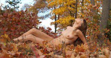 Бесплатные фото ноги,ню,брюнетка,деревья,на улице,лес,голые