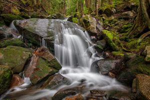 Фото бесплатно лес, река, скалы