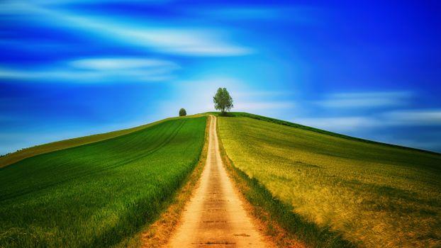 Заставки Road, tree, sky