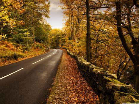 Фото бесплатно облака, цвета, забор, леса, пейзажи, листья, nuture, дороги, скалы, небо, камни, полосы