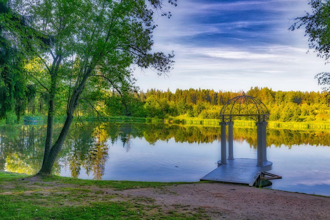 Фото бесплатно Гиагинский район, Республика Адыгея, Giaginsky pond, осень, парк, лес, деревья, природа, пейзаж, пейзажи