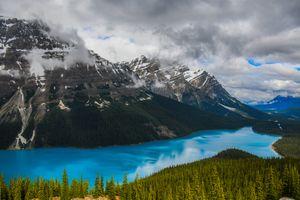 Photo free Alberta, sky, trees