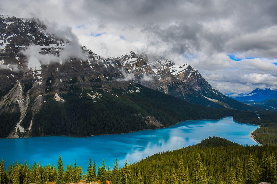 Фото бесплатно Alberta, небо, деревья - на рабочий стол